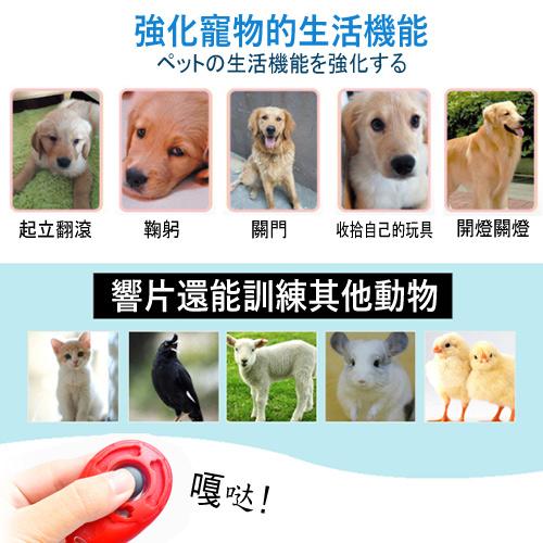 【培菓平價寵物網】dyy》專業水滴形狀響板│響片訓狗器-顏色(隨機出貨)可超取