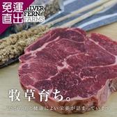 勝崎生鮮 紐西蘭銀蕨PS熟成巨無霸沙朗牛排~超厚切4片組 (450公克±10%/1片)【免運直出】