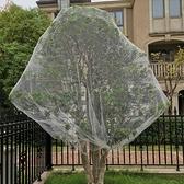 防鳥網 防鳥用網櫻桃絲網樹果園葡萄菜園紗網陽臺防護鳥套果樹網罩大棚罩