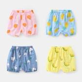 男童短褲純棉布短褲熱褲夏裝6女寶寶3男童2幼兒1歲9個月12小童中褲【免運】