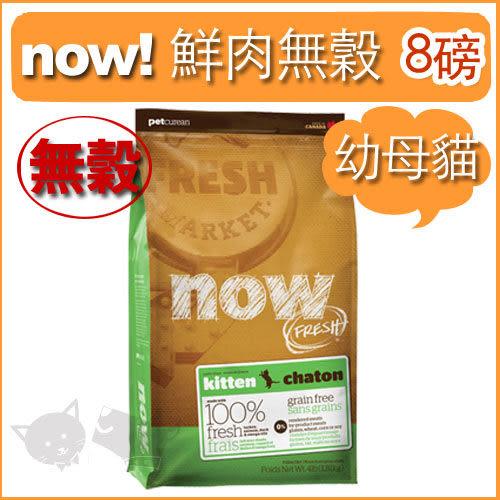 [寵樂子]《NOW!》Fresh鮮肉無穀天然糧-幼貓配方 8磅 / 貓飼料