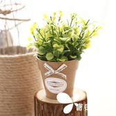 創意薄荷草盆栽 桌面小擺件