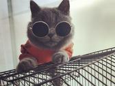 寵物狗狗貓咪墨鏡眼鏡