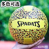 運動排球學生中考5號軟式氣排球沙灘男女大室內外比賽訓練用球 EY6824【Rose中大尺碼】