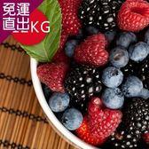 幸美生技 進口急凍莓果任選12公斤免運/栽種藍莓/蔓越莓/覆盆莓/黑莓/黑醋栗/紅櫻桃【免運直出】