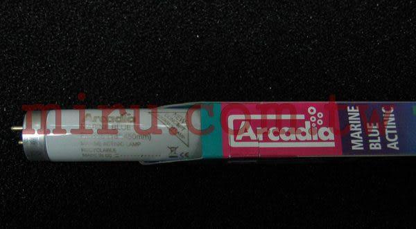 【西高地水族坊】英國阿卡迪亞Arcadia 海水長效培養燈管MARINE BLUE ACTINIC T8 FL (15W)