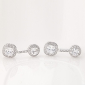 耳環 純銀鍍白金 鑲鑽-高貴典雅生日情人節禮物女飾品4色73cr148【時尚巴黎】