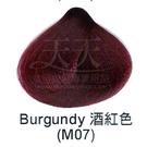 【特殊色專家】果酸彩色染髮霜 85ml (M07_酒紅色) [40802]