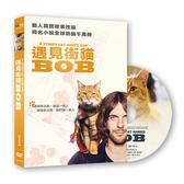 【停看聽音響唱片】【DVD】遇見街貓BOB (平裝版)