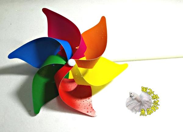 [6色彩虹小風車] 彩色風車 童玩.玩具風車.卡通風車 ☆庭院裝飾.居家.店面.大廳擺飾☆