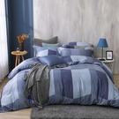鴻宇 雙人特大床包兩用被套組 天絲300織 洛普 台灣製 T20112