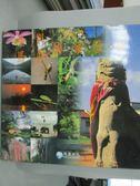 【書寶二手書T6/攝影_ZER】金門馬告國家公園攝影精選_原價1500_遊登良