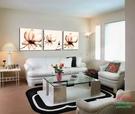 【優樂】無框畫裝飾畫淡黃透明花客廳無框版畫版畫掛畫三聯畫