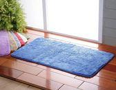 【新帛毛巾】微絲開纖紗系列- 強力吸水浴墊(大)2入