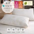 【BEST寢飾】頂級天絲防水透氣枕頭保潔墊枕套 一組2入 防螨抗菌 防水枕套 天絲舒柔布