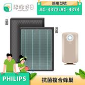 綠綠好日 抗菌 複合型 蜂巢顆粒 濾芯 適 Philips 飛利浦 AC4374 AC4373 空氣清淨機