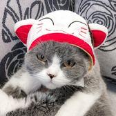 寵物頭套狗狗帽子比熊泰迪貓咪帽 全館免運