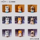 尺寸兩種以上請詢問報價正版苦惱小貓盲盒空想造物不二
