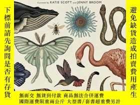 二手書博民逛書店Animalium罕見(Welcome to the Museum生物標本彩繪圖集大開本非英文Y366883