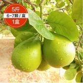 柚是我果園・銀賞50年麻豆老欉文旦5斤裝1盒【搶先預購】