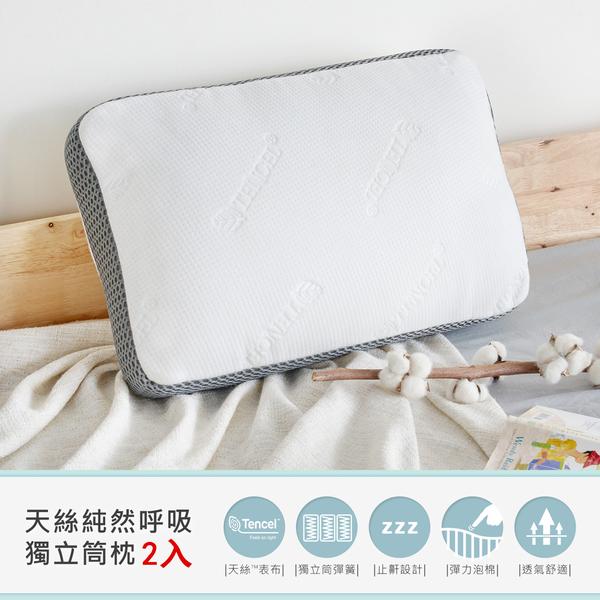 止鼾設計天絲獨立筒枕(兩入)/H&D東稻家居