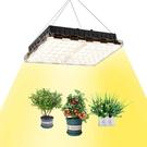 ZSHONORLIGH【日本代購】LED植物成長燈 植物培育燈 完全光譜-300W