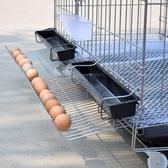 雞籠子養殖籠鐵絲籠加粗養雞籠子雞舍家用特大號折疊自動滾蛋雞籠【快速出貨八折下殺】