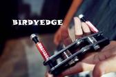 BIRDYEDGE電動滑板基礎款 八輪支架 碳鋼品質 推薦 推廣價