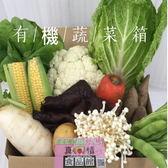 有機蔬菜箱(多吃有機會)