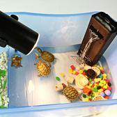【新年鉅惠】烏龜小烏龜缸帶曬臺水龜養龜的專用缸魚缸養烏龜活體龜盆水陸缸