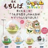 正版 SK JAPAN 忠犬生態球 泡泡球 扭蛋 轉蛋 公仔擺飾 全套4款 COCOS TU002