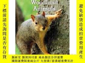 二手書博民逛書店Little罕見Woodland AnimalsY346464