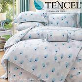 ✰特大 薄床包兩用被四件組✰ 100%純天絲《慕雪》