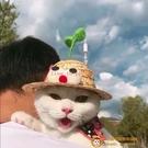 寵物貓咪狗狗帽子頭套小豆芽精靈小蜜蜂禮帽草帽生日裝飾帽【小獅子】