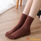 4雙裝 加絨加厚五指襪兔毛冬季分趾腳指襪保暖五趾【小獅子】