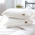 四孔透氣中空芯棉枕 加高立襯支撐 防蟎抗菌 舒適睡眠 MIT 枕頭【金大器】