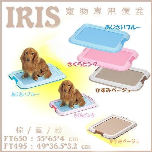 *KING WANG*日本IRIS FT-650平面式狗狗便盆 / 尿盆 三色
