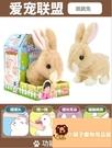 小寵物小兔子電動公仔小號小公仔可愛玩偶可愛毛絨玩具兔玩偶【小獅子】