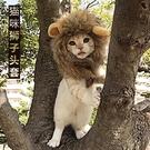 貓咪獅子頭套貓帽子可愛搞怪寵物