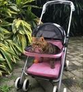 寵物推車-1分鐘安裝泰迪博美貴賓小型狗貓寵物手推車可折疊車載【快速出貨】