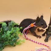 繩子鬆鼠牽引繩荷蘭豬兔子溜鼠繩溜兔金絲熊繩子玩具用品   傑克型男館