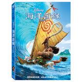 【迪士尼動畫】海洋奇緣-DVD 普通版