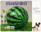 麗嬰兒童玩具館~小寶貝最愛的西瓜球22cm遊戲球.彈力球.躲避球.平面球.