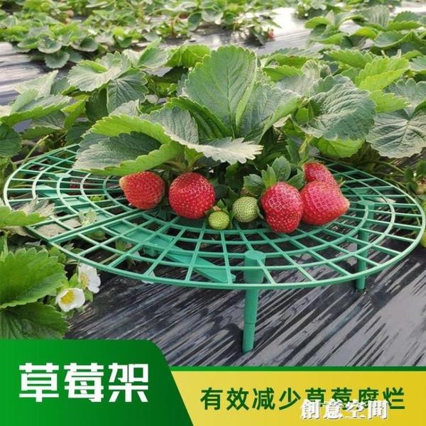 草莓架陽臺盆栽種菜架種植果實花盆托架庭院植物爬藤園藝支架神器 NMS創意新品