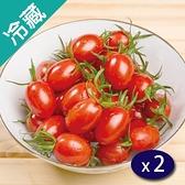 台灣麻油寮鹽地小番茄(600g±5%/盒)X2【愛買冷藏】