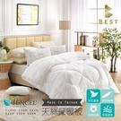【BEST寢飾】天絲保暖被 雙人 2.5KG TENCEL 被胎 被芯 冬被 棉被 厚被 台灣製