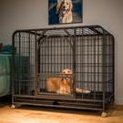 狗籠 狗籠子中大型犬寵物狗狗室內帶廁所分離圍欄柯基拉布拉多金毛家用【幸福小屋】