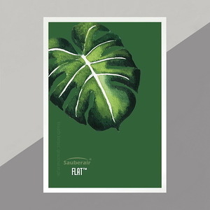 FLAT空氣清淨機 附白框一片綠葉