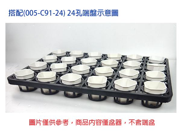 【綠藝家】景天八角方型盆2.5吋-白色(3號)5個/組