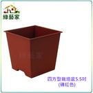 【綠藝家005-D114-RE】四方型栽培盆5.5吋-磚紅色(厚)